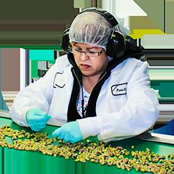 Premium Pistachio Processing Services Inspector